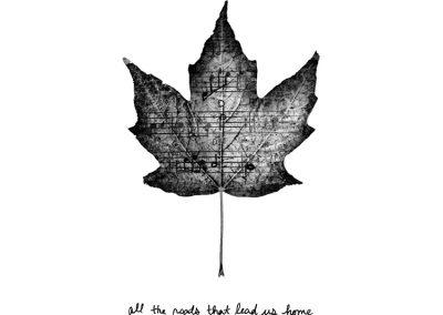 Gaelynn Lea - All Roads Album Art